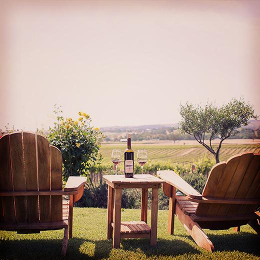 Still Waters Vineyards